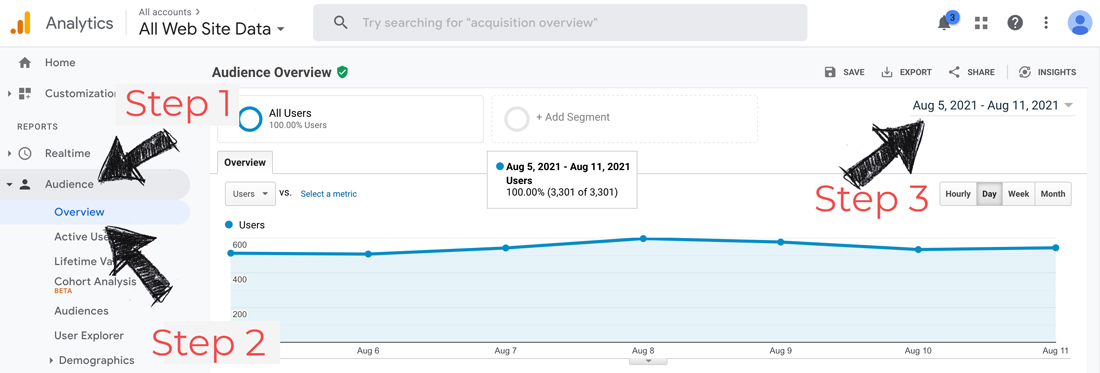 Google analytics visitor report